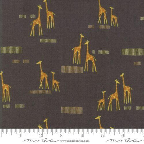 Safari Life Black 20647 15